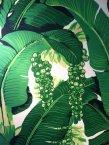 Greenbrier Brazilliance Wallpaper